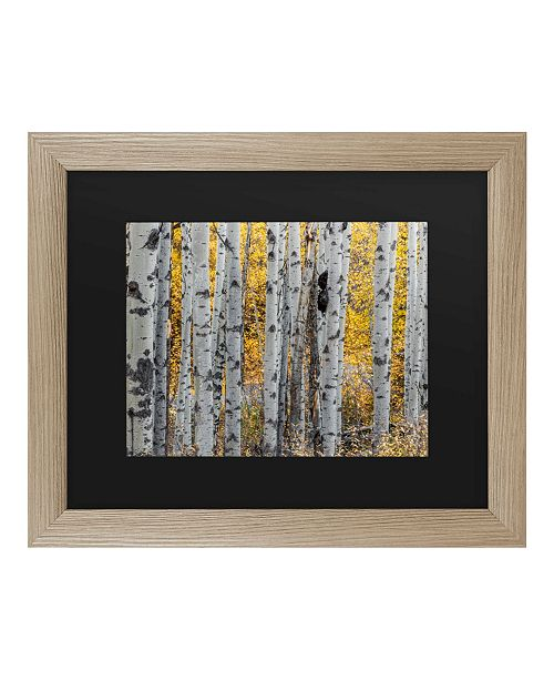 "Trademark Global Pierre Leclerc Aspen Trees Matted Framed Art - 37"" x 49"""