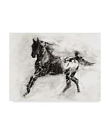 "Ethan Harper Rustic Appaloosa II Canvas Art - 15"" x 20"""