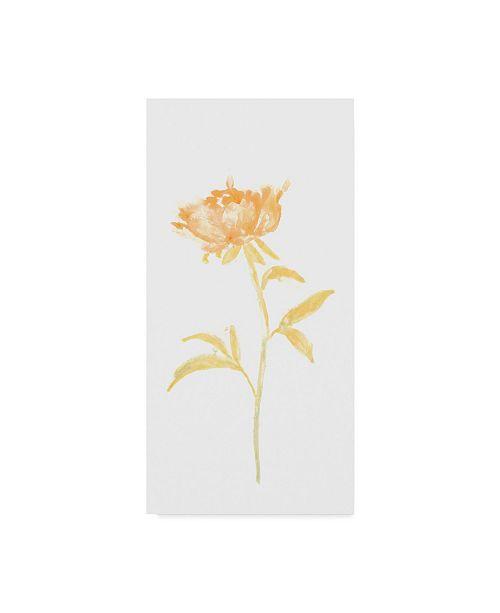 """Trademark Global June Erica Vess Bouquet Blush II Canvas Art - 15"""" x 20"""""""