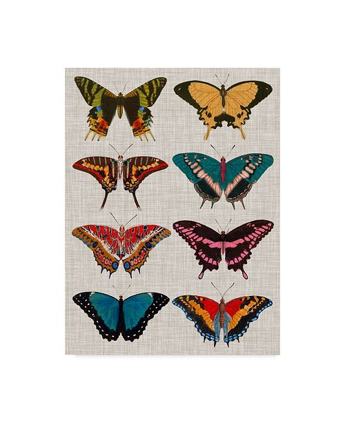 "Trademark Global Vision Studio Polychrome Butterflies I Canvas Art - 15"" x 20"""