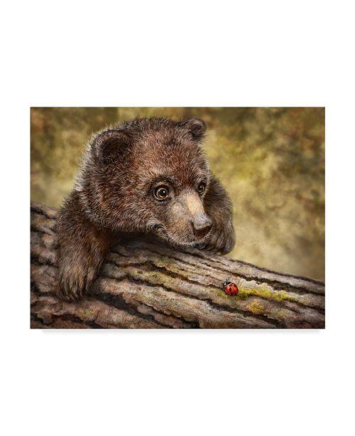 "Trademark Global Patrick Lamontagne Kodiak Cub Canvas Art - 15"" x 20"""