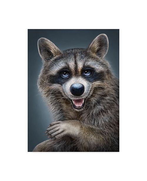 "Trademark Global Patrick Lamontagne Raccoon Totem Canvas Art - 15"" x 20"""