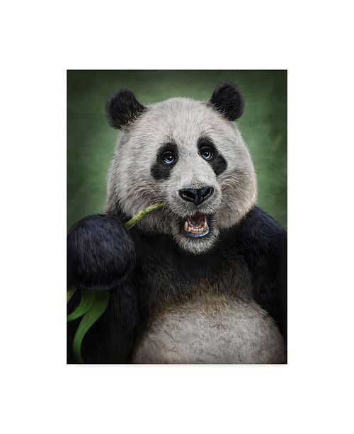 "Trademark Global Patrick Lamontagne Panda Totem Canvas Art - 15"" x 20"""