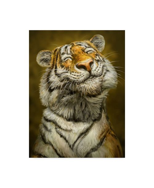 "Trademark Global Patrick Lamontagne Smiling Tiger Canvas Art - 20"" x 25"""