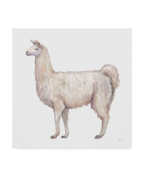 "Trademark Global Mary Urban Bohemian Cactus Llama Canvas Art - 20"" x 25"""
