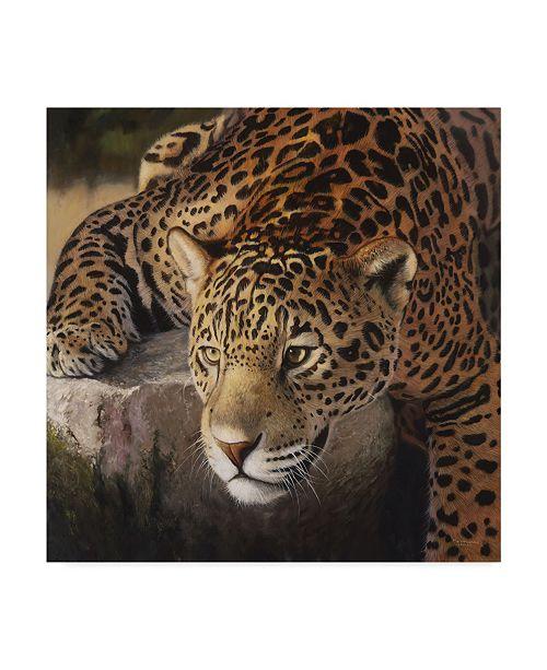 "Trademark Global Pip Mcgarry On the Rocks Leopard Canvas Art - 20"" x 25"""