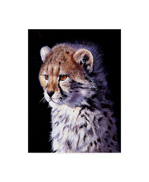 """Trademark Global Pip Mcgarry Cheetah Cub Canvas Art - 15"""" x 20"""""""