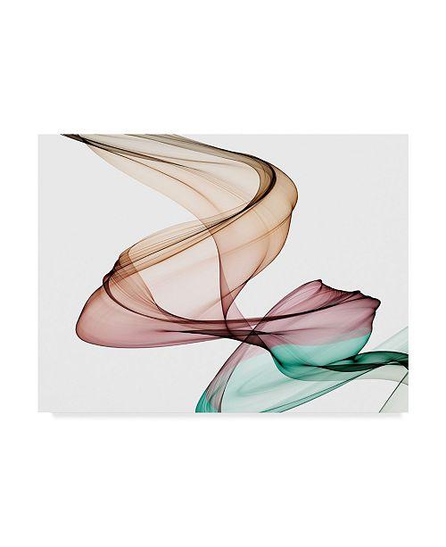 "Trademark Global Irena Orlov Invisible World III Canvas Art - 20"" x 25"""