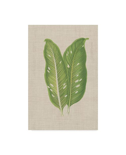 "Trademark Global Unknown Leaves on Linen V Canvas Art - 15"" x 20"""