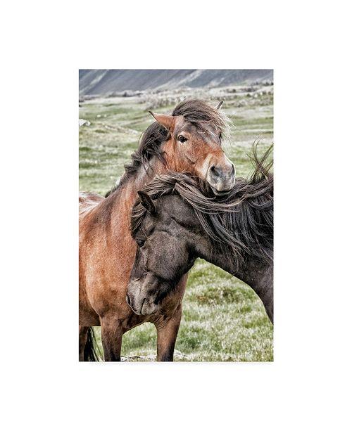 "Trademark Global Danny Head Best Friends Horses Canvas Art - 15"" x 20"""