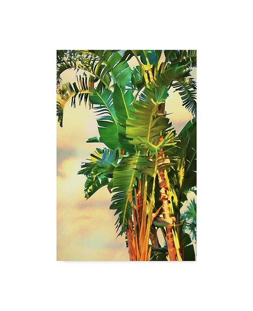 "Trademark Global Melinda Bradshaw Bird of Paradise Palm II Canvas Art - 15"" x 20"""