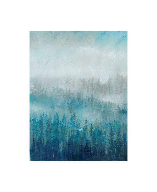 "Trademark Global Tim Otoole Above the Mist I Canvas Art - 15"" x 20"""