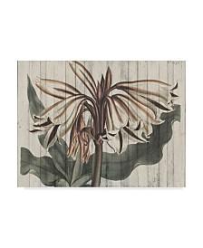 "Studio W Rustic Floral III Canvas Art - 15"" x 20"""