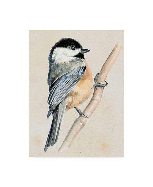 """Trademark Global Jennifer Paxton Parker Little Bird on Branch II Canvas Art - 15"""" x 20"""""""