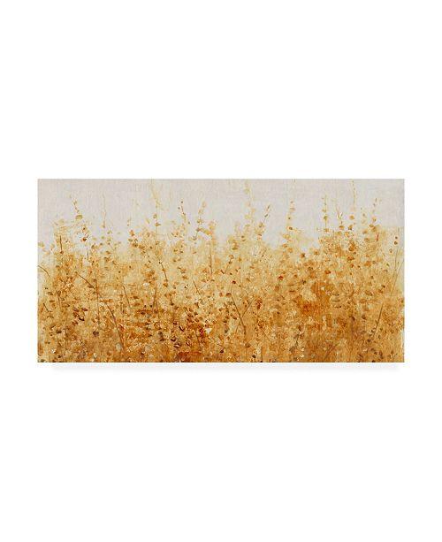 "Trademark Global Tim Otoole Ochre Fields I Canvas Art - 15"" x 20"""