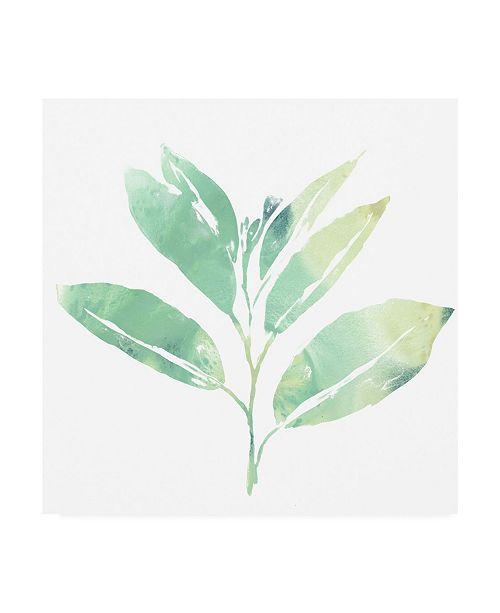 "Trademark Global June Erica Vess Prisma Tropical II Canvas Art - 20"" x 25"""