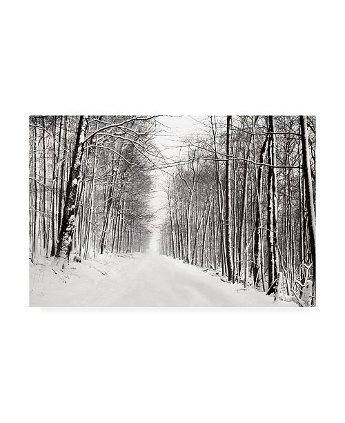 "Trademark Global James Mcloughlin A Snowy Walk III Canvas Art - 20"" x 25"""