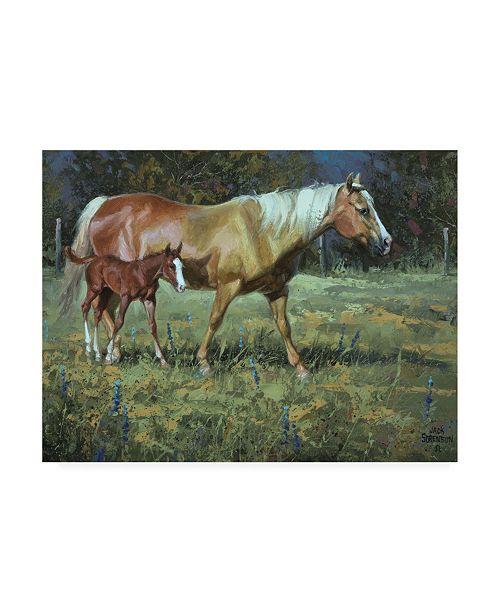 "Trademark Global Jack Sorenson Field of Dreams Horses Canvas Art - 20"" x 25"""