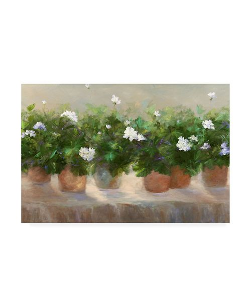 "Trademark Global Sheila Finch White Geraniums Canvas Art - 20"" x 25"""