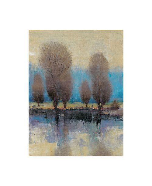 "Trademark Global Tim Otoole On the Horizon II Canvas Art - 20"" x 25"""