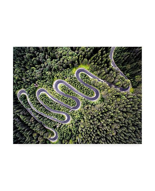 "Trademark Global PhotoINC Studio Road Winding Canvas Art - 36.5"" x 48"""