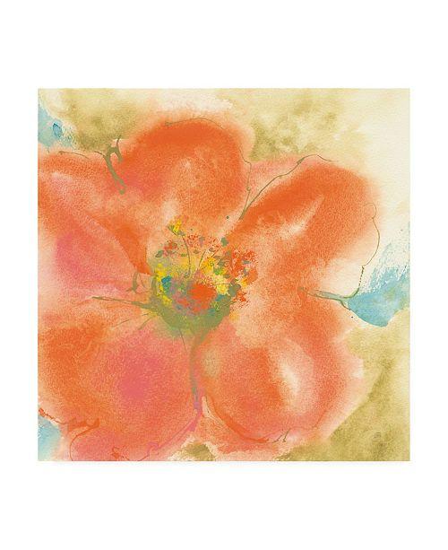 "Trademark Global Chris Paschke Coral Poppy II Canvas Art - 19.5"" x 26"""