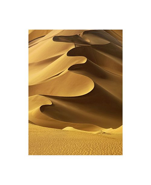 "Trademark Global Design Fabrikken In the Dunes 2 Fabrikken Canvas Art - 15.5"" x 21"""
