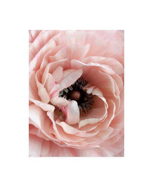 """Trademark Global Design Fabrikken Flower Fabrikken Canvas Art - 19.5"""" x 26"""""""