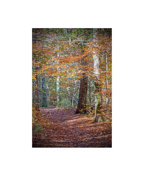 "Trademark Global Brooke T. Ryan Rust Fall Forest Canvas Art - 15.5"" x 21"""