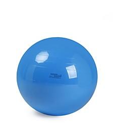 Physio Exercise Ball 95