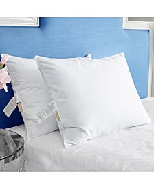 Bed Pillow Set of 2 Collection