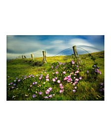 "- Morning Glory Flowers Canvas Art, 36"" x 27"""