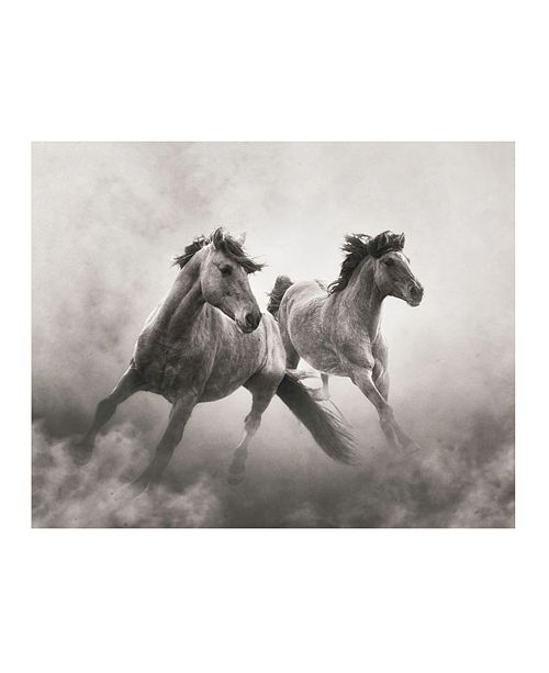 "CHRISTOPHER KNIGHT COLLECTION - In The Dust Canvas Art, 18"" x 24"""