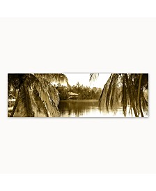 """Christopher Knight Collection - Sepia Palms Canvas Art, 18"""" x 58"""""""