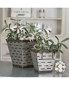 VIP Home & Garden 2-Piece Metal Square Olive Buckets