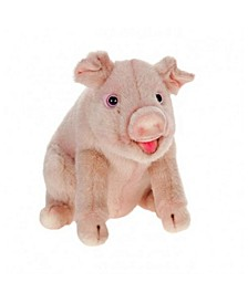 Oliver the Pig Plush Toy
