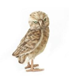 Burrowing Owl Plush Toy