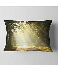 """Designart Bright Sunbeams to Fall Forest Landscape Photography Throw Pillow - 12"""" x 20"""""""