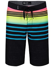 Toddler Boys Striped Colorblocked Swim Trunks