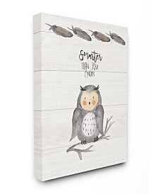 """Stupell Industries Smarter Than You Know Owl Canvas Wall Art, 16"""" x 20"""""""
