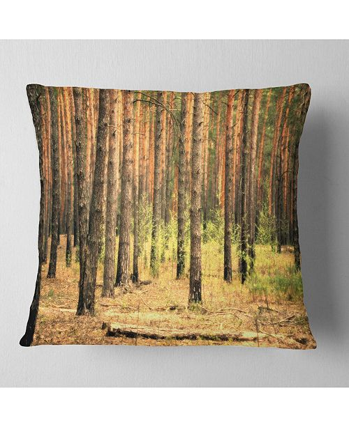 """Design Art Designart Beautiful Pine Forest At Sunset Modern Forest Throw Pillow - 16"""" X 16"""""""