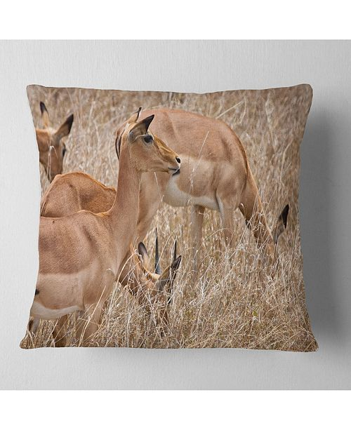 "Design Art Designart Grants Gazelles Grazing In Grassland Animal Throw Pillow - 16"" X 16"""