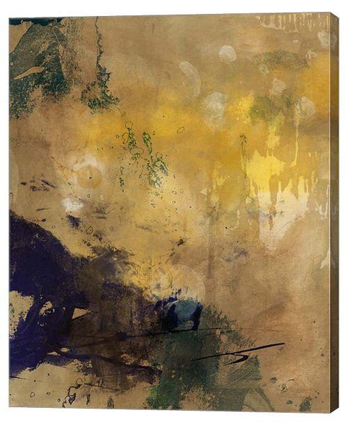 "Metaverse Amber Haze II by Sisa Jasper Canvas Art, 28.75"" x 36"""