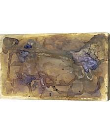 "Violet Inclusion II by Renee Stramel Canvas Art, 31"" x 20"""