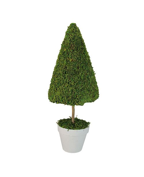 Northlight Reindeer Moss Potted Artificial Spring Floral Topiary Tree