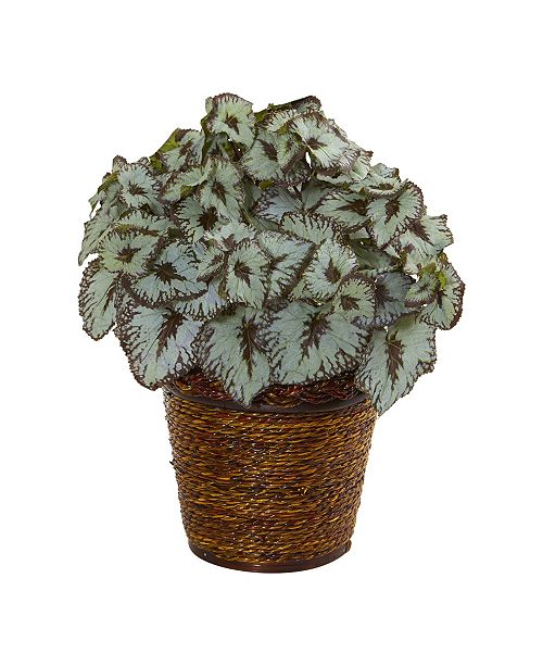 """Nearly Natural 13"""" Begonia Artificial Plant in Basket"""
