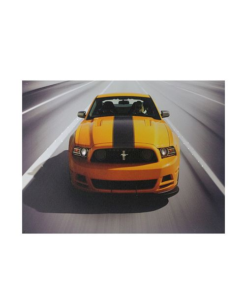 "Northlight Fiber Optic and LED Lighted 2013 Ford Mustang Boss 302 Canvas Wall Art, 12"" x 15.75"""
