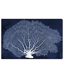 Coral Fan Cyanotype Canvas Art Collection