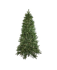 7.5' Pre-Lit LED Instant Connect Neola Fraser Fir Artificial Christmas Tree - Dual Lights