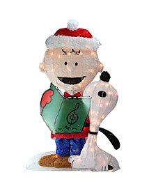 Pre-Lit Peanuts Charlie and Snoopy 2-D Christmas Outdoor Decoration